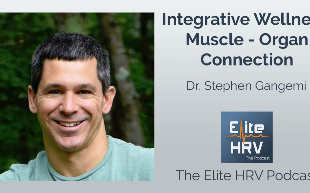 Integrative Wellness, Muscle-Organ Connection with Dr. Stephen Gangemi